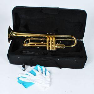 Trompete Bb Mundstück Tragetasche Handschuhe mit Koffer für Anfänger