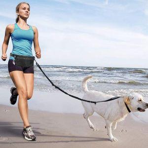 Hundeleine Hundeführleine mit Reflektierende Nähte kotbeutelspender