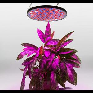 LED Pflanzenlampe 50W Wachsen licht Wachstumslampe Pflanzenlichter