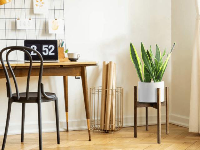 Pflanzenhalter--Selber machen Zuhause DIY